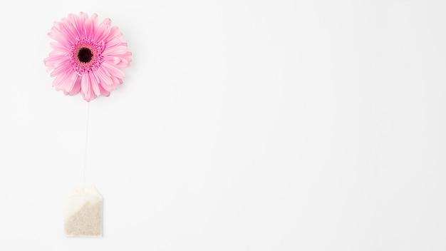 Blume und teebeutel Kostenlose Fotos