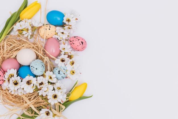 Blumen in der nähe von eiern und nest Kostenlose Fotos