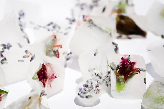 Blumen in eiswürfeln und kugeln Kostenlose Fotos