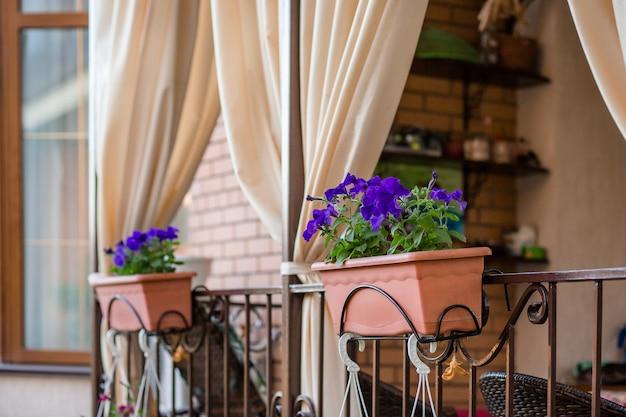 Blumen in hängenden töpfen auf der veranda des hauses. Premium Fotos
