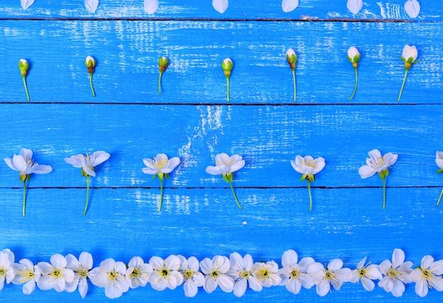 Blumen mit einem zweig von kirschen Premium Fotos