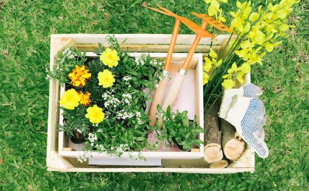 Blumen und gartengeräte in holzkiste Kostenlose Fotos