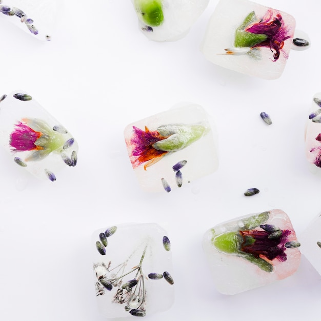 Blumen und samen in eiswürfeln Kostenlose Fotos