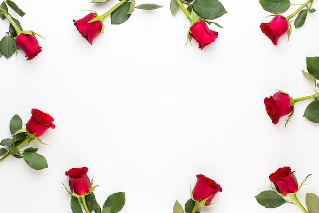 Blumen zusammensetzung. rahmen aus roter rose auf weißem hintergrund. flache lage, draufsicht, kopierraum. Premium Fotos