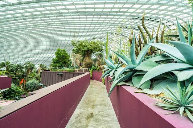 Blumenhaubengarten und gewächshauswald für reise Kostenlose Fotos