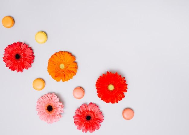 Blumenknospen mit keksen auf tabelle Kostenlose Fotos