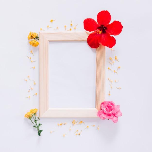 Blumenrahmen Kostenlose Fotos