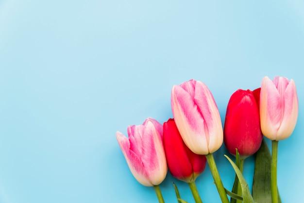 Blumenstrauß aus hellen blumen im bund Kostenlose Fotos