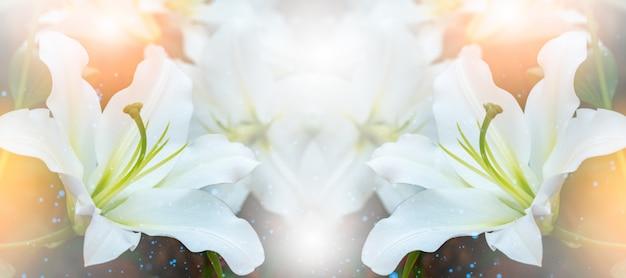 Blumenstrauß aus lilien. lily ist eine pflanzengattung Premium Fotos