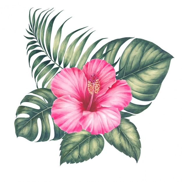 Blumenstrauß von tropischen monstera-blättern. Premium Fotos