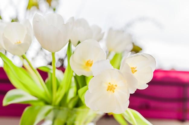 Blumenstrauß von weißen tulpen in einem vase auf einem grauen hintergrund. blumen als geschenk für ihre lieblingsperson. kopieren sie spce. Premium Fotos