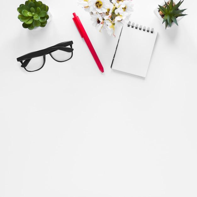 Blumenvase; kaktuspflanze; brille; stift und spiralblock auf weißem hintergrund Kostenlose Fotos