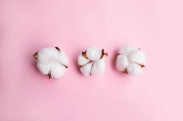 Blumenzusammensetzung auf rosa schreibtisch mit baumwolle. flache lage, draufsicht, kopienraum. Premium Fotos