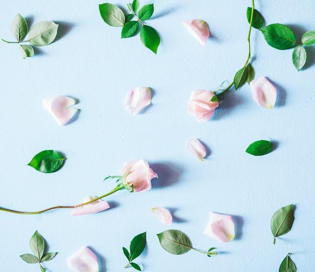 Blumenzusammensetzung. rosarosenblumen auf blauem hintergrund. ansicht von oben. Premium Fotos
