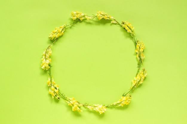Blumenzusammensetzung. runden blumenkranz des feldes von gelben blumen auf grün Premium Fotos