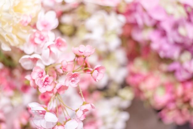 Blumiger hintergrund. wand mit zarten rosa blüten Premium Fotos