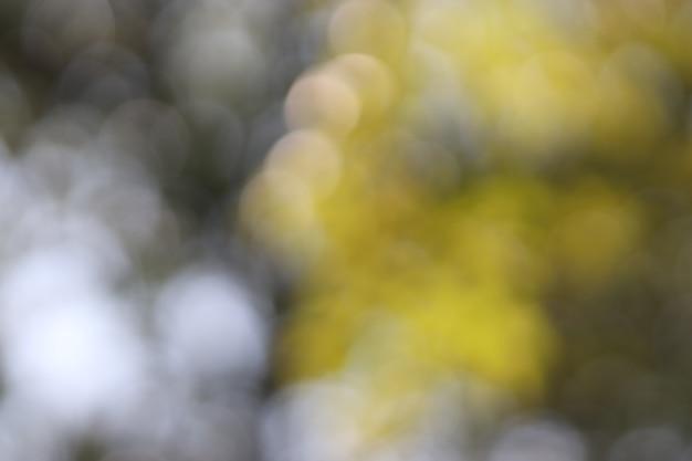 Bokeh light-beschaffenheitshintergrund, weiche unschärfe Premium Fotos