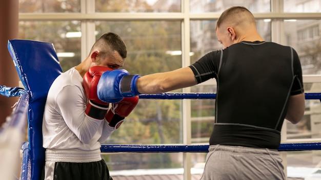 Boxer mit handschuhen, die mit mann trainieren Premium Fotos