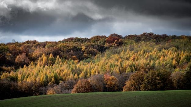 Breiter schuss von bewaldeten hügeln mit einem bewölkten himmel im hintergrund Kostenlose Fotos