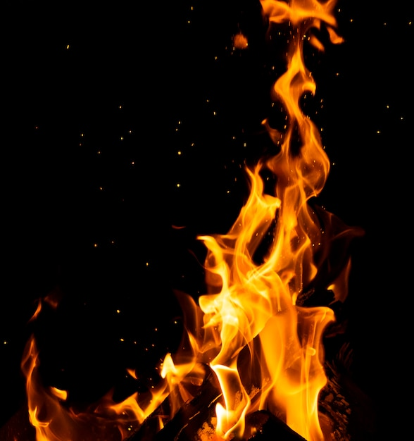 Brennende holzscheite mit hohen flammen und funken Premium Fotos