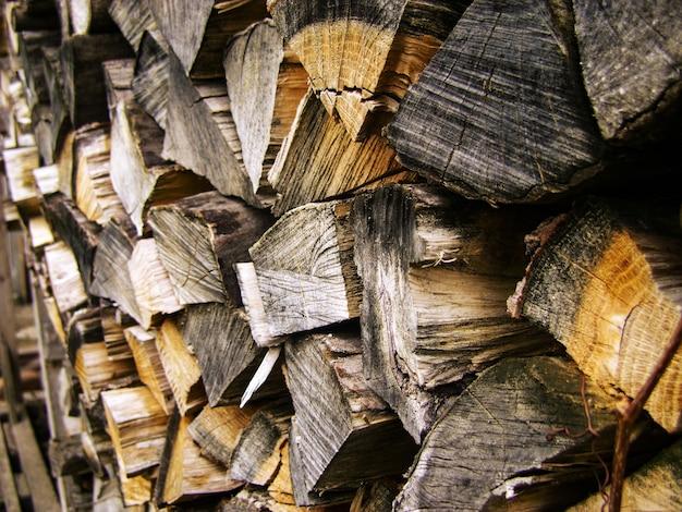 Brennholz, brennholzstapel im wald. Premium Fotos