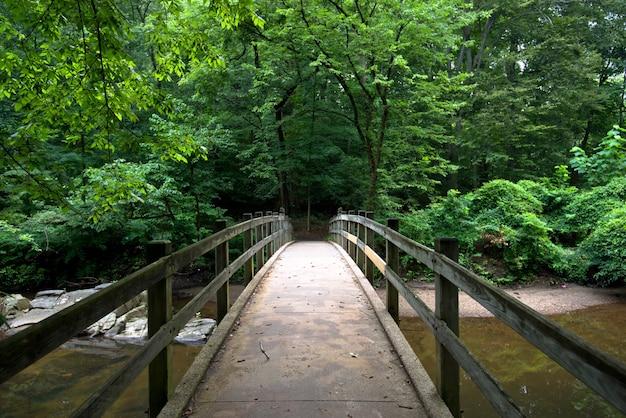 Brücke im park Kostenlose Fotos