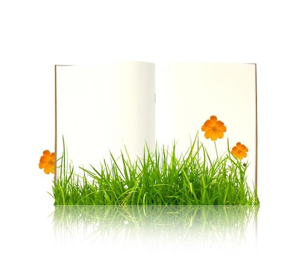buchen sie mit pflanzen vor wachsenden download der kostenlosen fotos. Black Bedroom Furniture Sets. Home Design Ideas