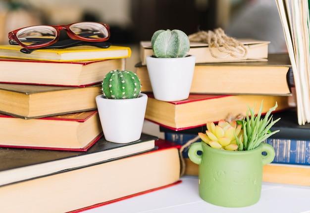 Buchhaufen mit kaktus Kostenlose Fotos