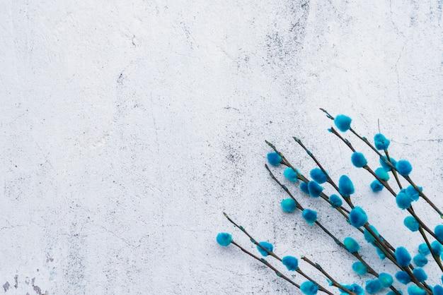 Bündel blaue weidenzweige Kostenlose Fotos