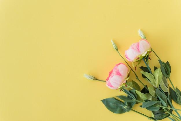 Bündel rosa pfingstrosen Kostenlose Fotos