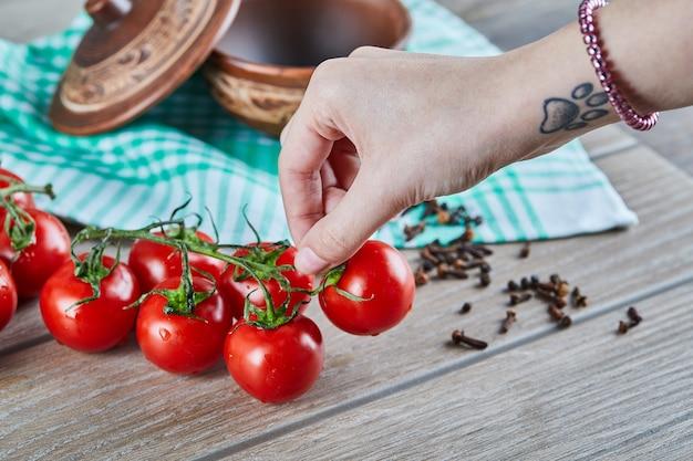 Bündel von tomaten mit zweig und frau, die eine tomate auf holztisch halten Kostenlose Fotos