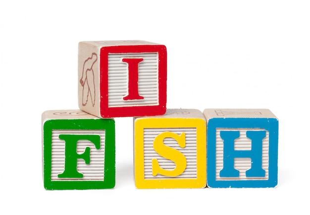 Bunte alphabetblöcke. wortfische getrennt auf weiß Premium Fotos