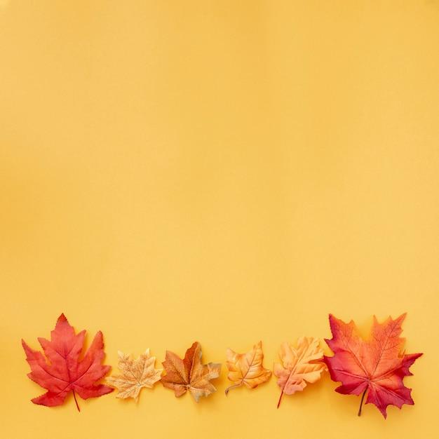 Bunte blätter auf gelbem grund Kostenlose Fotos