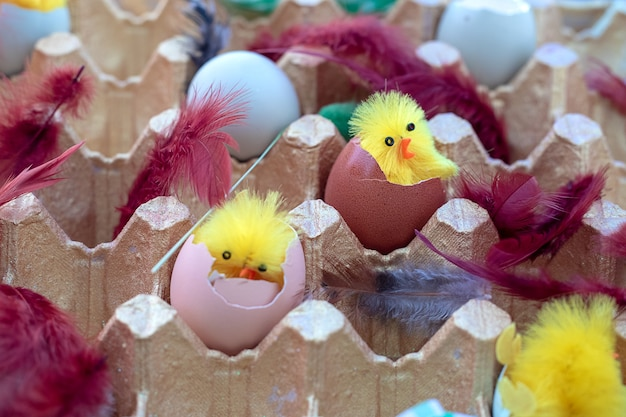 Bunte ostereier in einer cortonbox unter niedlichen spielzeughühnern und federn. osterdekor-konzept. nahaufnahmefoto Premium Fotos