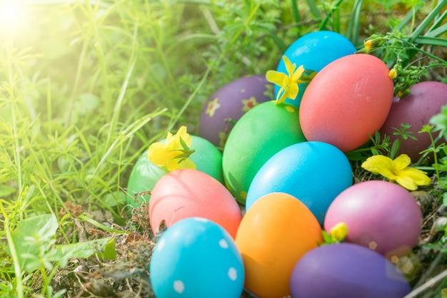 Bunte ostereier jagen feiertagsdekorationen ostern-konzepthintergrund Premium Fotos