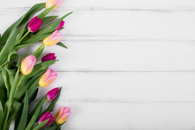 Bunte tulpen in linie Kostenlose Fotos