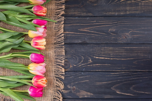 Bunte tulpen in reihe auf seilmatte Kostenlose Fotos