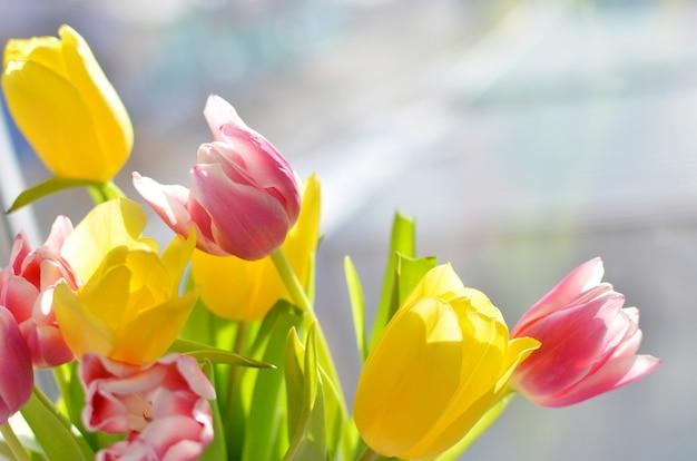 Bunter blumenstrauß von tulpen auf dem hintergrund der fenster-, gelben und rosablumen Premium Fotos