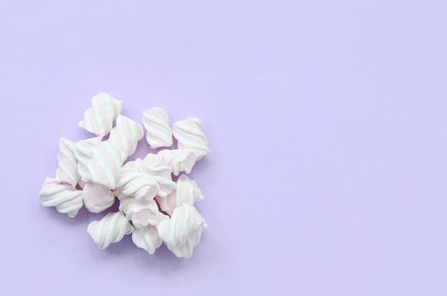 Bunter eibisch ausgebreitet auf violettem papierhintergrund. pastell kreative textur. minimal Premium Fotos