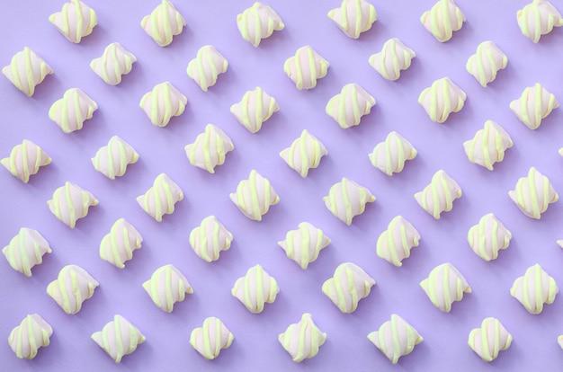 Bunter eibisch ausgebreitet auf violettem papierhintergrund. Premium Fotos