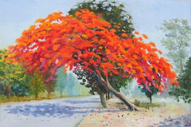 Bunter pfauenblumenbaum am straßenrand und im sonnenlicht Premium Fotos