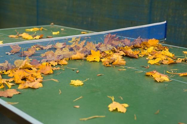 Buntes laub verlässt auf einer tischtennistisch Premium Fotos