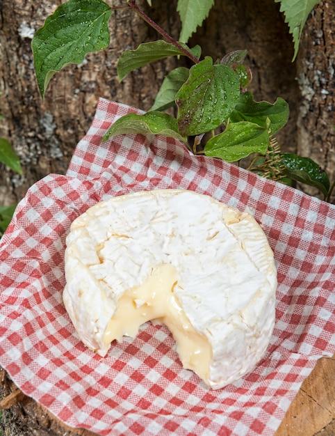 Camembert auf einer tischdecke der roten quadrate Premium Fotos