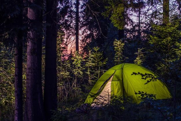 Camping in einem wald Kostenlose Fotos