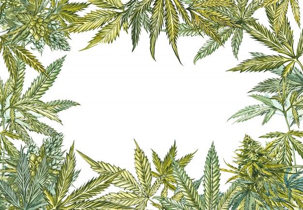Cannabis verlässt den rahmen Premium Fotos