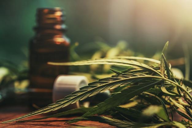 Cannabiskraut und blätter mit ölextrakten in gläsern. medizinisches konzept Premium Fotos