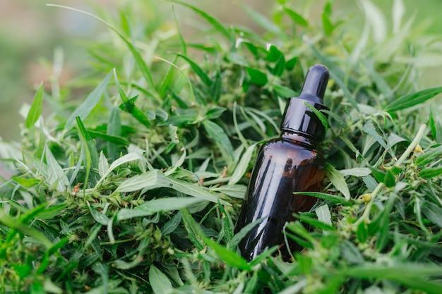 Cannabisöl, cbd-öl-cannabis-extrakt, medizinisches cannabis-konzept. Kostenlose Fotos
