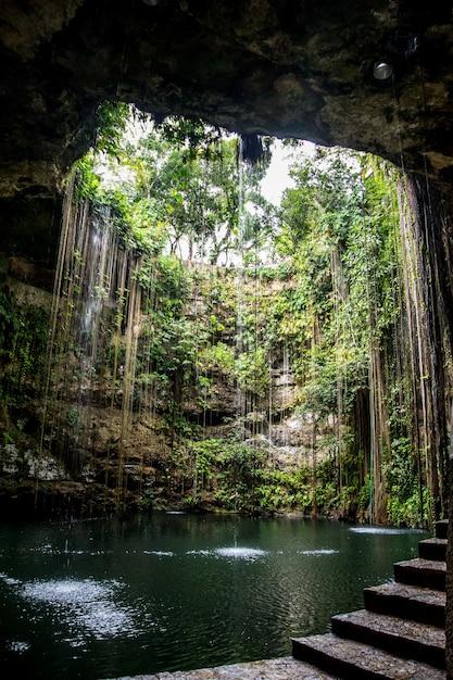 Cenote in mexiko Premium Fotos