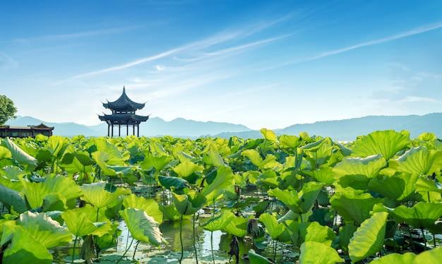 China hangzhou westsee landschaft Premium Fotos