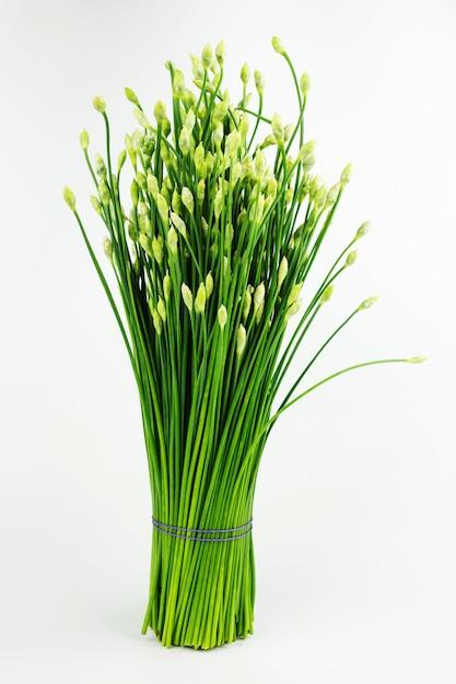 Chinesische schnittlauch- oder schnittlauchblume lokalisiert auf weißem hintergrund Premium Fotos